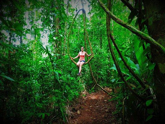 Гольфито, Коста-Рика: Piedras Blancas National Park