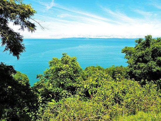 Гольфито, Коста-Рика: View of the Golfo Dulce