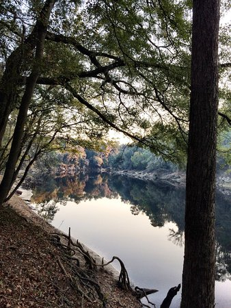 Suwannee River State Park: photo0.jpg