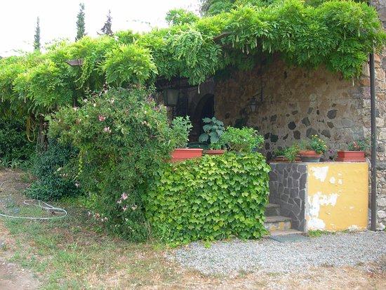 Montecatini Val di Cecina, Ιταλία: la pergola della colazione