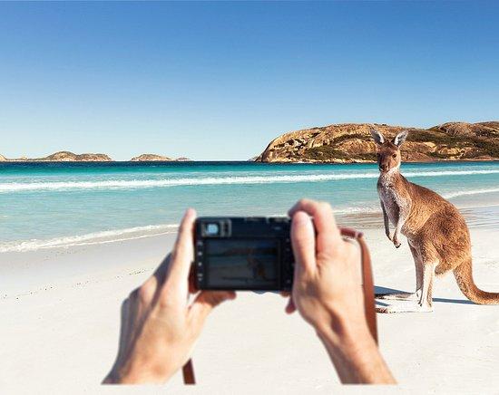 Lucky Bay, Esperance - Picture of Western Australia - Tripadvisor