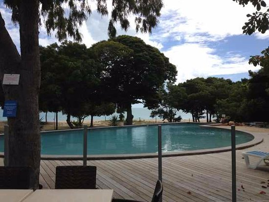 Hydeaway Bay, Australia: Eating under the shade of the lovely trees overlooking both pool and beach,wow it doesnt get bet
