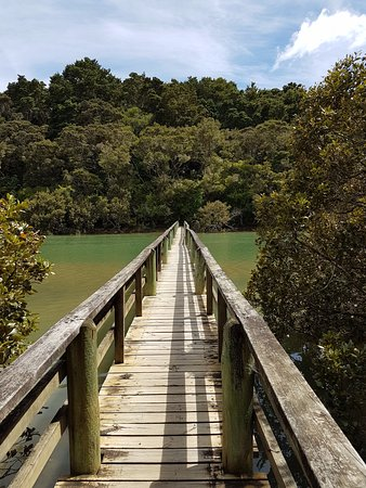 Waitangi, Nuova Zelanda: Haruru Falls Track