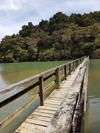 Waitangi, Selandia Baru: Haruru Falls Track