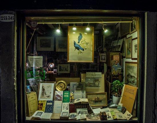 Libreria antiquaria Segni nel Tempo