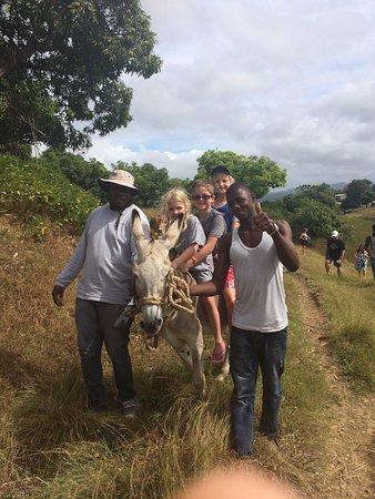 Joe Cool Taxi & Tours Jamaica: The family farm!