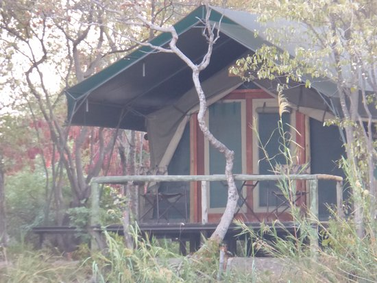 Caprivi Region, Namibië: our tent view from the river cruise