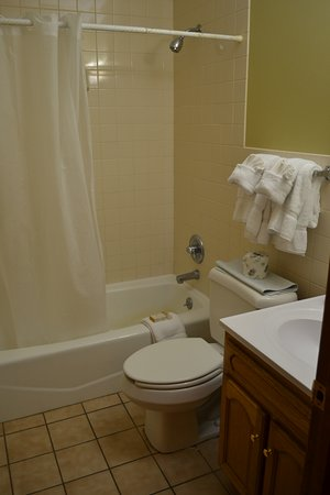 Carrollton, KY: Cabin bathroom - towels, shampoo, soap and lotion provided