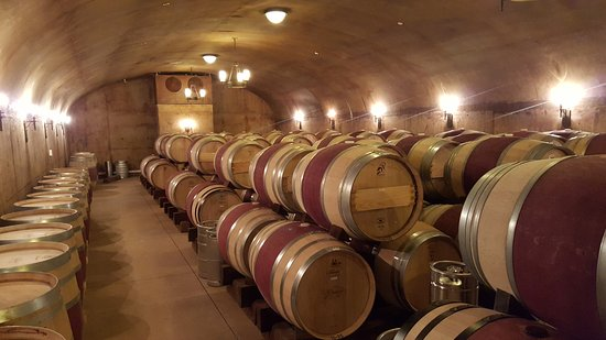 Grassini Family Vineyards: Arrange a tour of the winery and get to see the barrel room.