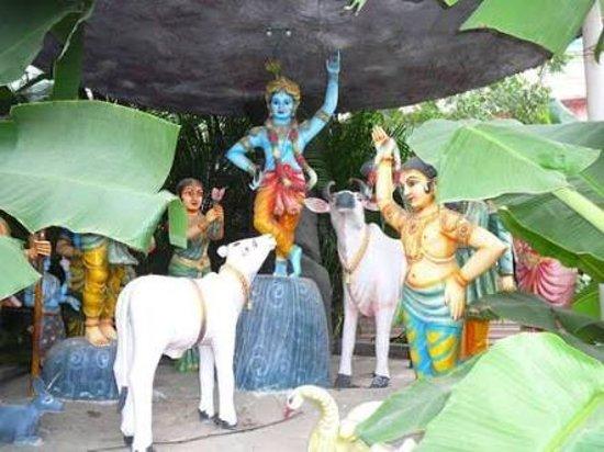 ISKCON Rajahmundry, Sri Sri Radha Gopinath Temple: 09-13-25-images_large.jpg