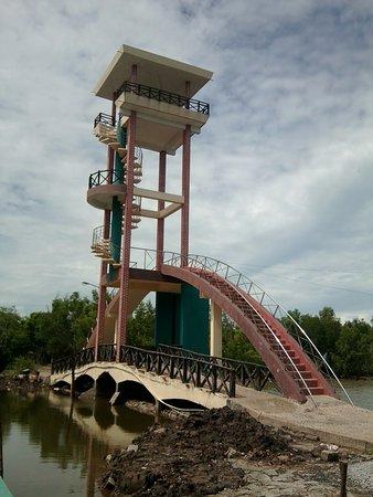 Ca Mau Province, Wietnam: 2011 Ca Mau