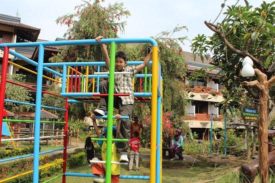 anak anak bisa bermain dengan puas picture of royal orchids rh tripadvisor com au