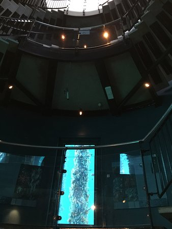 Busselton, Australia: The inside view of the observatory.