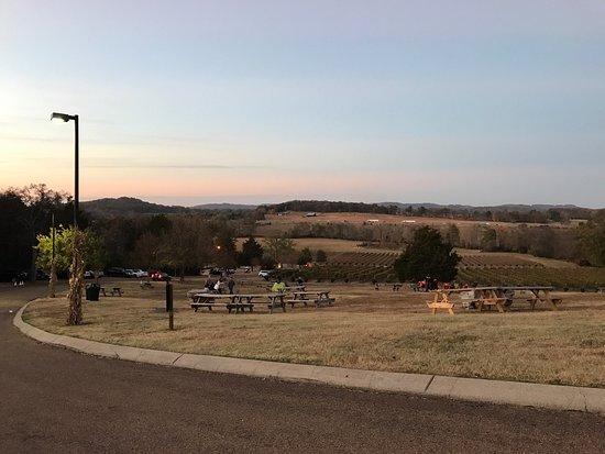 Arrington, TN: photo0.jpg