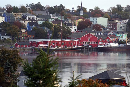 Topmast Motel: Lunenburg Harbour from the motel