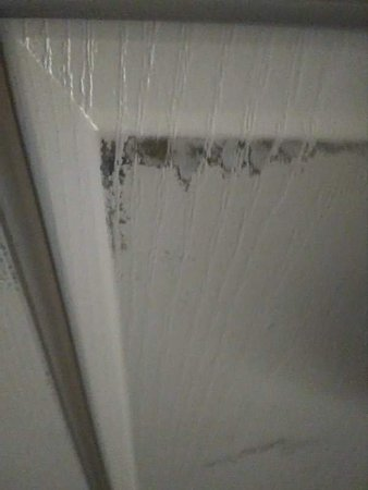 Gresham, OR: Bathroom door dirt???
