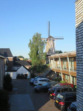 Beneden-Leeuwen, Nederland: de twee linden