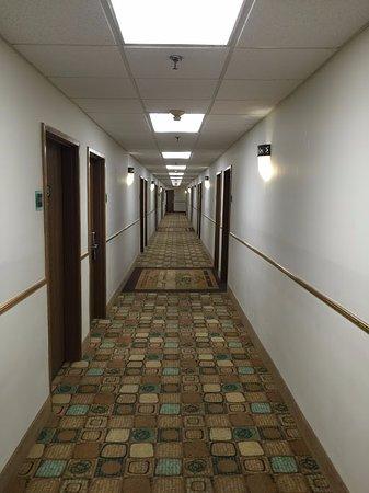 Best Western Plus Plaza Hotel: First floor hallway