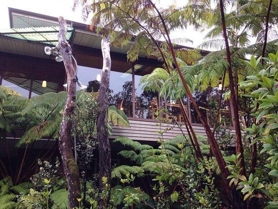 Volcano Inn: photo0.jpg