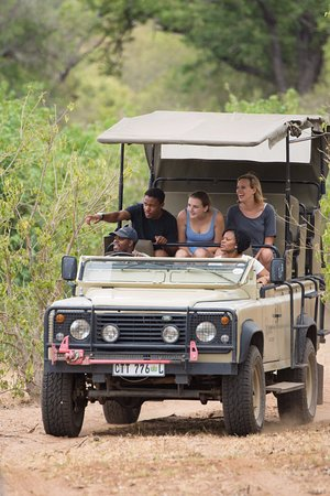 Phalaborwa, Güney Afrika: Open Jeep Safari