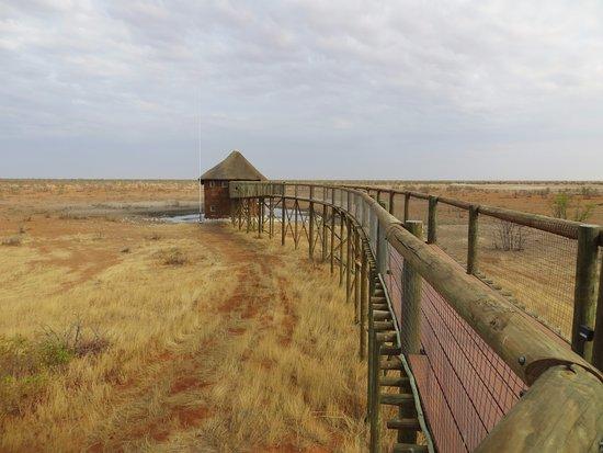 Photo of Staatliche Rastlager Etosha National Park