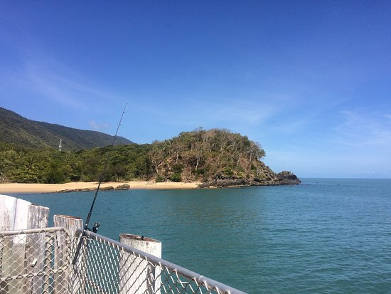 Alassio Palm Cove: photo0.jpg