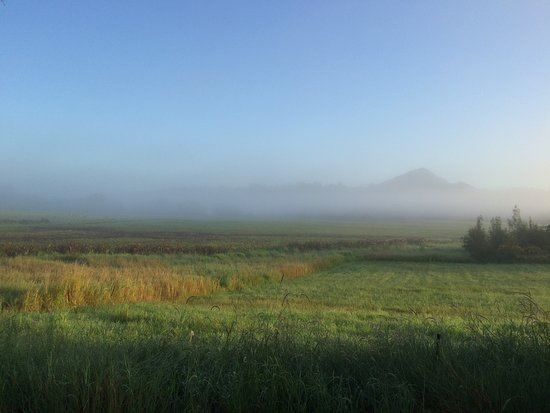 Eumundi, Australia: Morning view of Mount Cooroy