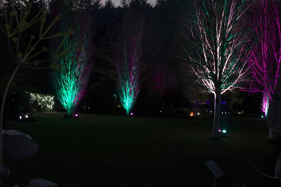 Great Torrington, UK: lights