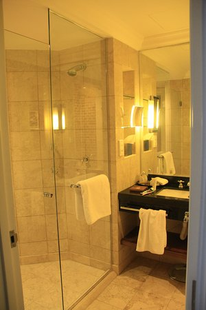 Grand Hyatt Amman: Bathroom and shower are combined into one.