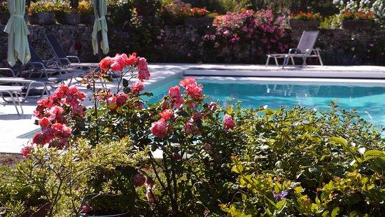 Naussannes, Frankrig: coin jardin+piscine