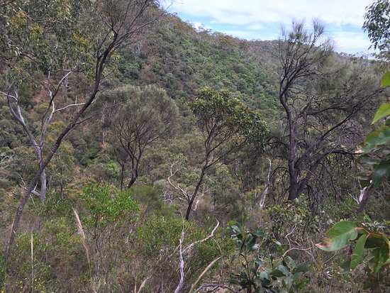 Adelaide Hills照片