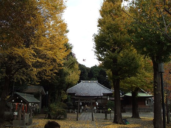Hiratsuka Shrine