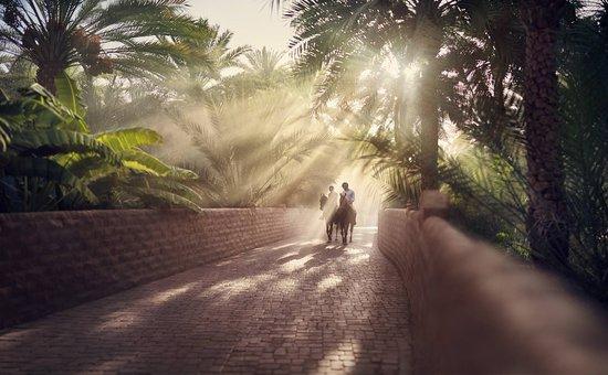 Adventure Emirates