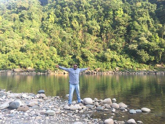 Meghalaya, Indie: Pebbles, water & tree, make for a amazing feeling.