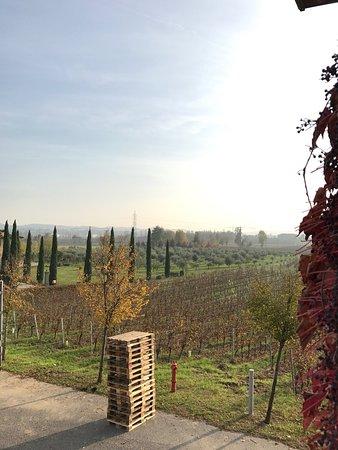 Provaglio d'Iseo, Ιταλία: photo1.jpg