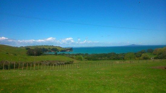 Whangaparaoa, New Zealand: photo0.jpg