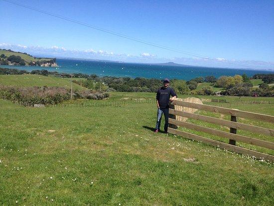 Whangaparaoa, New Zealand: photo1.jpg