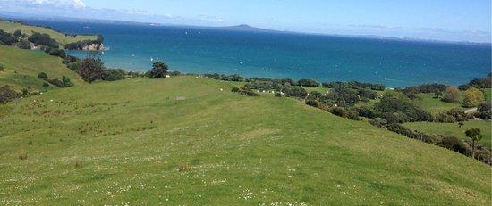 Whangaparaoa, Nova Zelândia: photo2.jpg