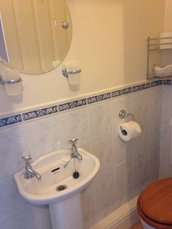 Lampeter, UK: small ensuite
