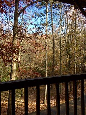 Cavender Creek Cabins Resort: photo2.jpg