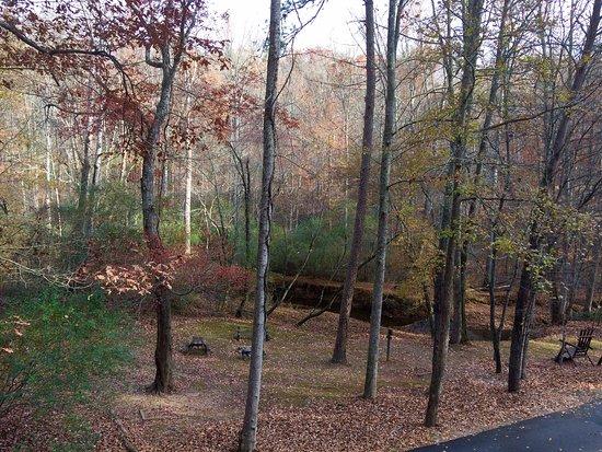 Cavender Creek Cabins Resort: photo5.jpg