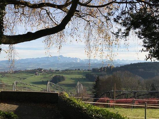 Wil, Schweiz: Blick auf den Säntis