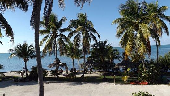 Long Key (Cayo Víbora), FL: View from room