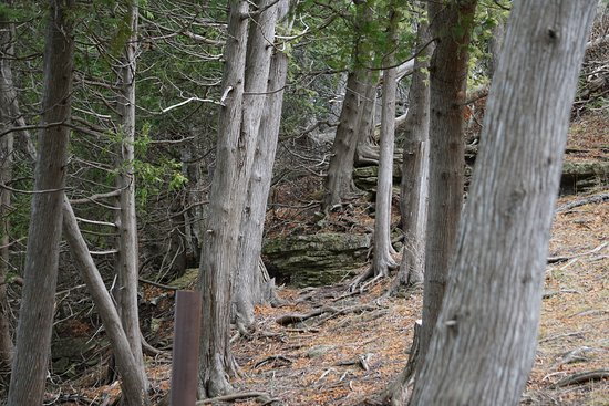 Ellison Bay, WI: Steep spots to be aware and not fall over the bluff
