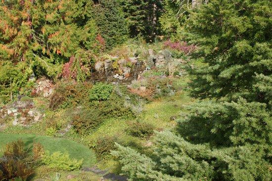 Ohme Gardens: Ohme Garden trail