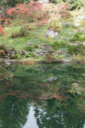 Ohme Gardens: Ohme Garden reflection