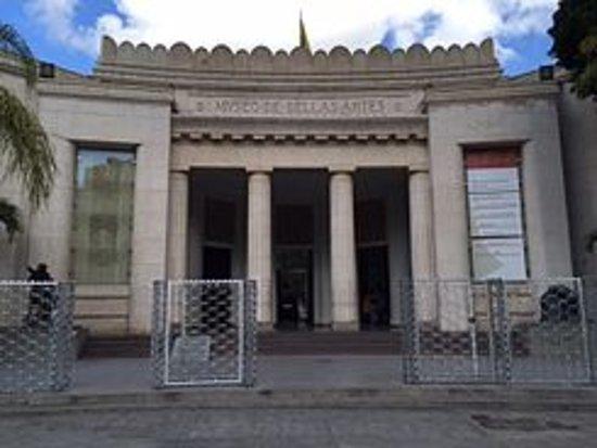 Museo de Bellas Artes: ENTRADA PRINCIPAL DESDE LA PALZA DE LOS MUSEOS
