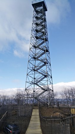 Wytheville, VA: View of the tower, from the swinging bridge