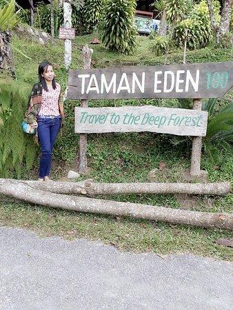 Taman Eden 100: icon taman eden