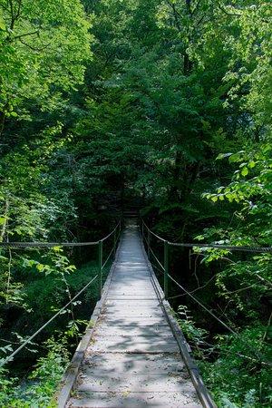 Tolmin, Eslovênia: Vista del puente colgante des de arriba.